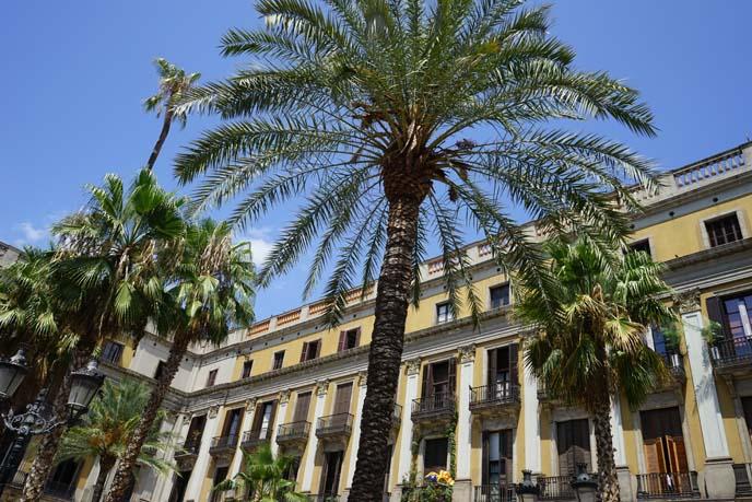 Plaça Reial, barcelona famous square