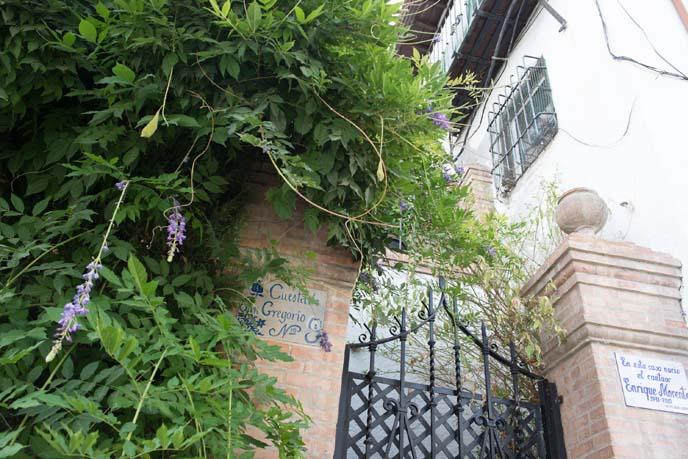 spanish gardens, flowers