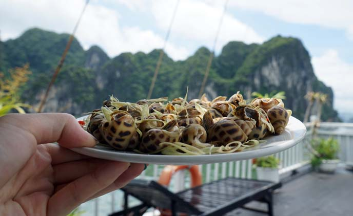 cooking class halong bay