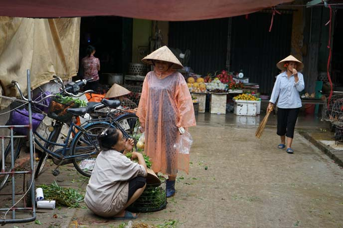 ciao travel vietnam tours