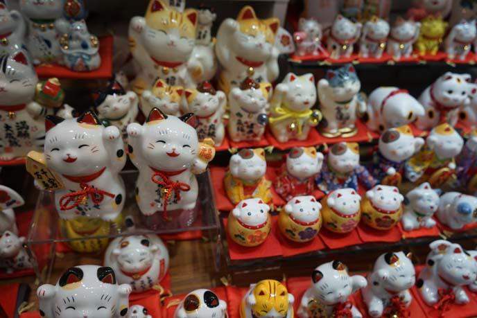 maneki neko largest cat collection