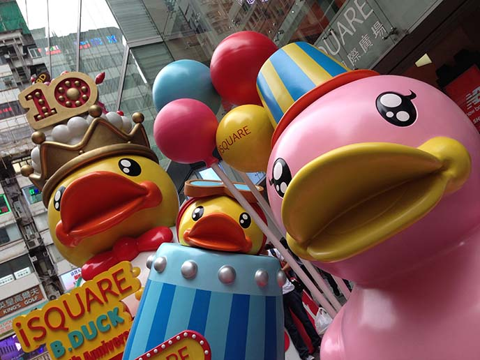rubber ducky statues, isquare hong kong