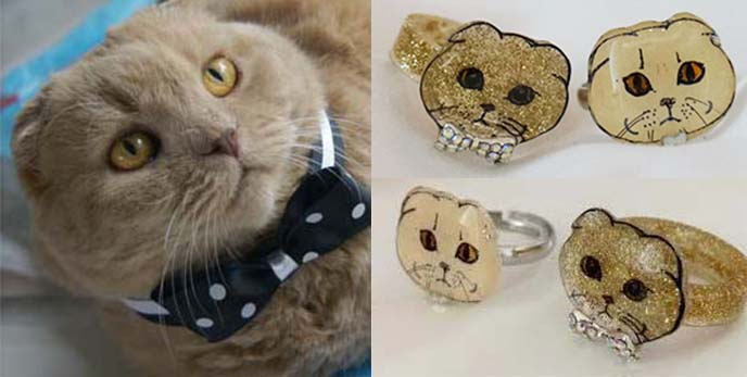 scottish fold cat rings, jewelry