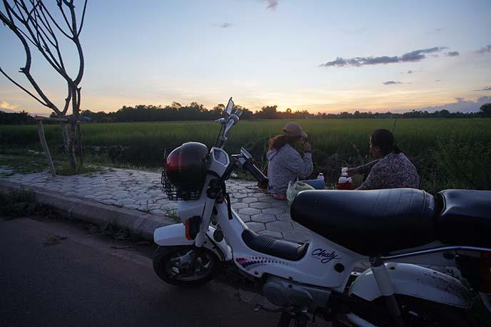 cambodia sunset, farm fields