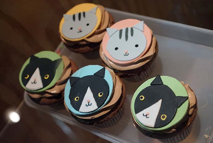 cat cafe cupcakes, menu