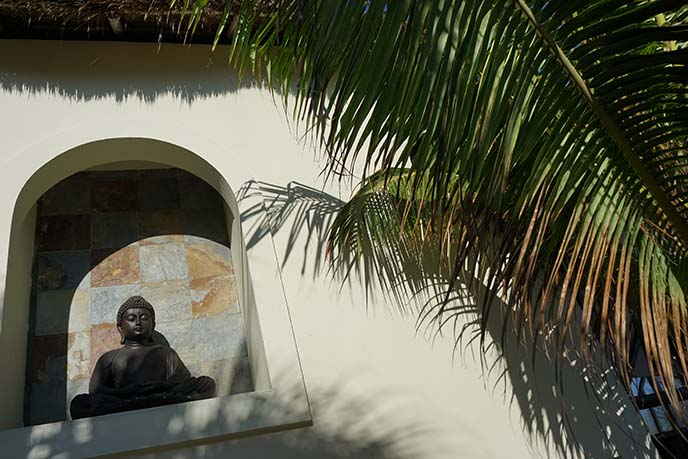 buddha statue mexico