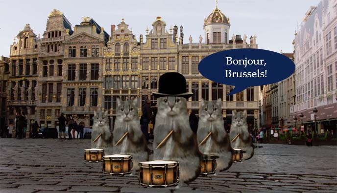 brussels tourism board surreal cats