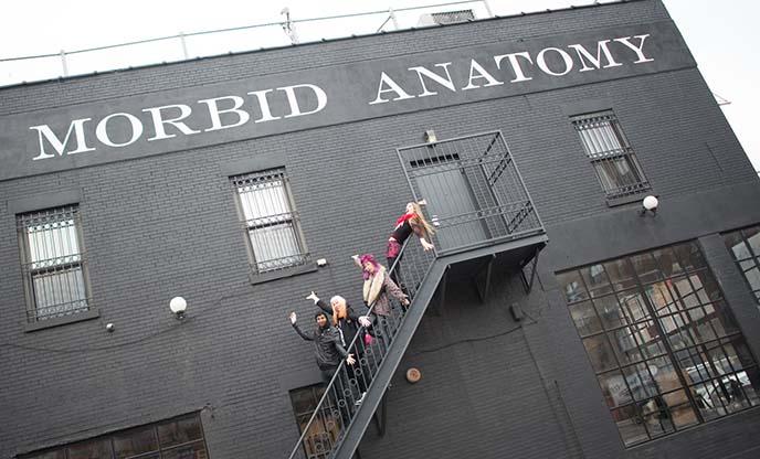 visit morbid anatomy museum tickets