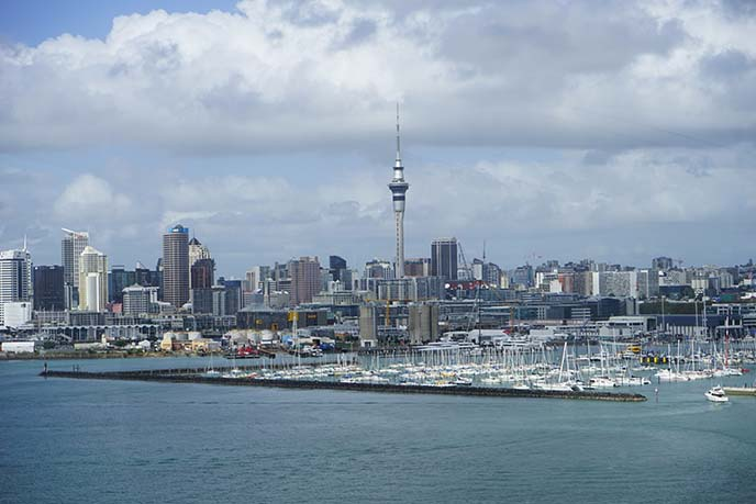 auckland skyline, sky tower