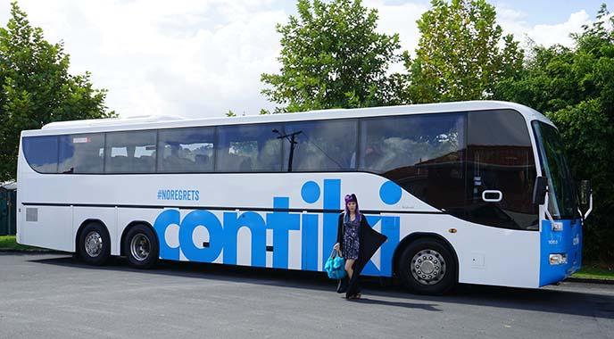 contiki bus review