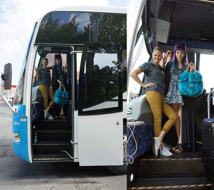 contiki driver, millennial bus tours