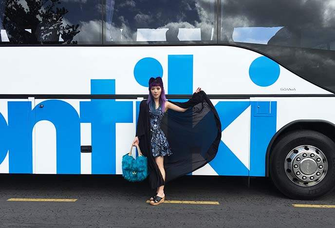 contiki bus tour new zealand
