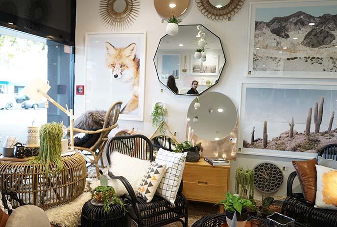 world store, auckland home design