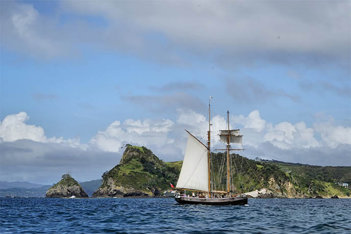 new zealand sailing, ship tours