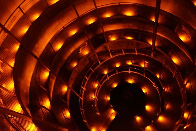 ruakuri cave tour spiral stairs