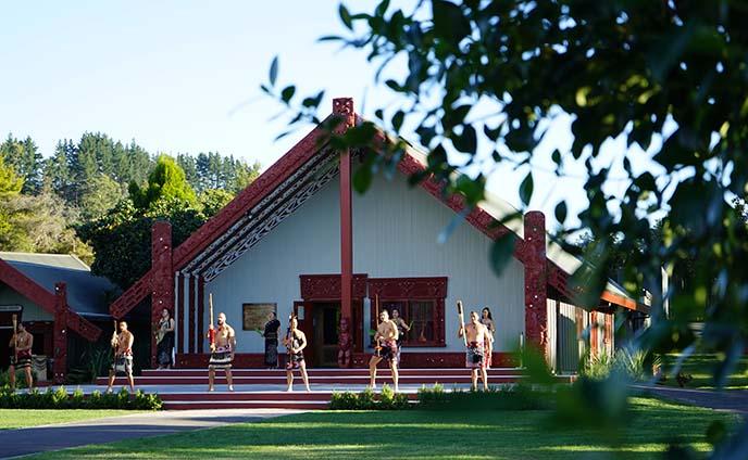 te puia maori park