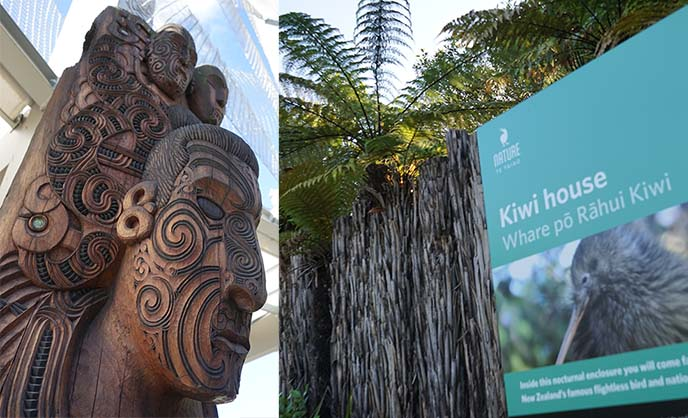 maori carvings, kiwi house