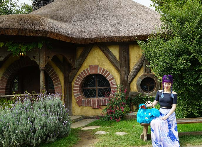 hobbit theme house