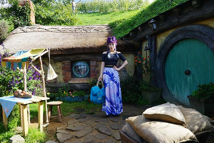 hobbit door, houses