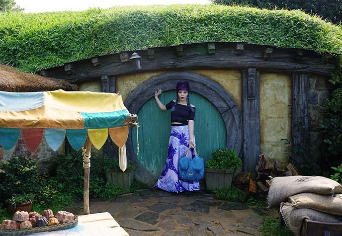inside hobbit homes, door