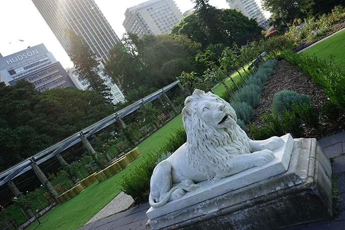 lion statues, royal botanic gardens sydney