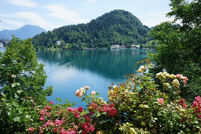 slovenia nature, flowers