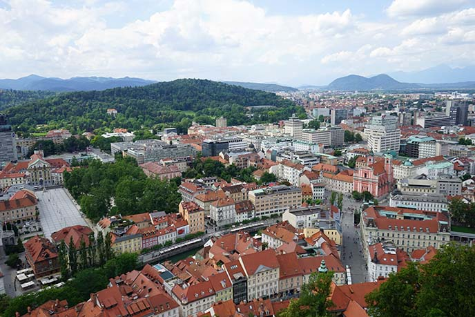 slovenia castle tower view