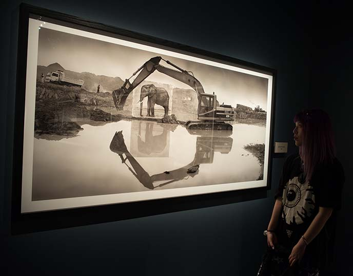 stockholm fotografiska photography museum