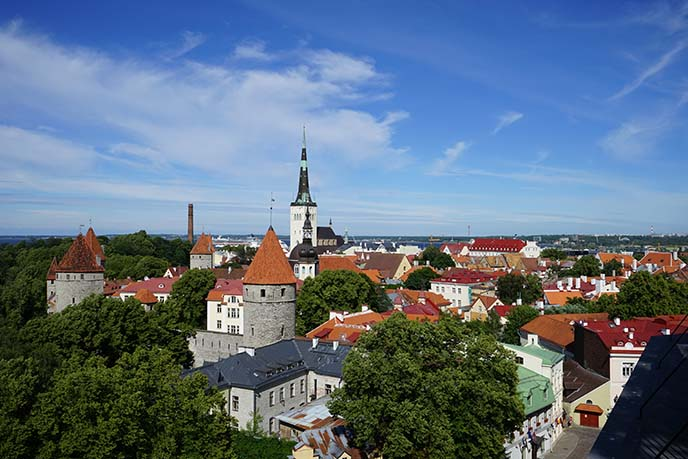 tallinn estonia red roofs, skyline
