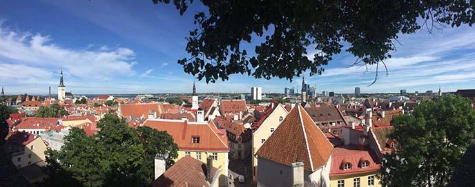 estonia tourism, tallinn viewpoint