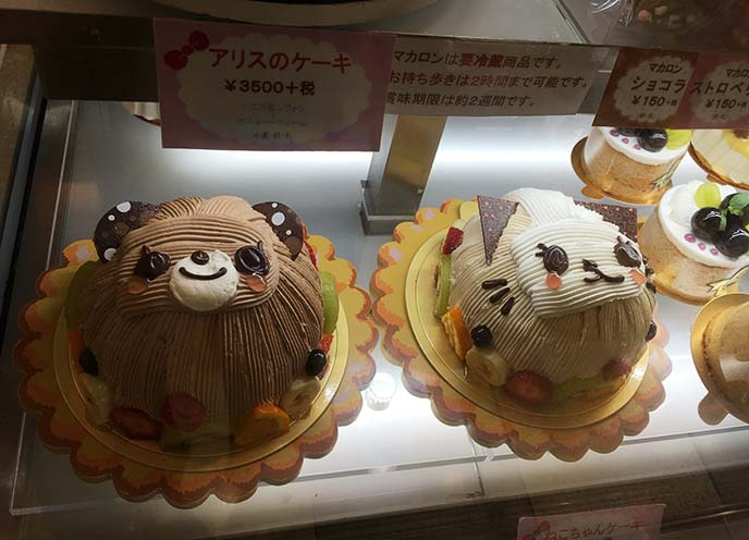 swimmer cute decorated bear cakes