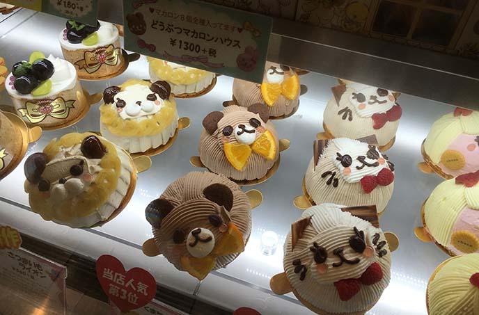 tokyo cute cakes swimmer shinjuku