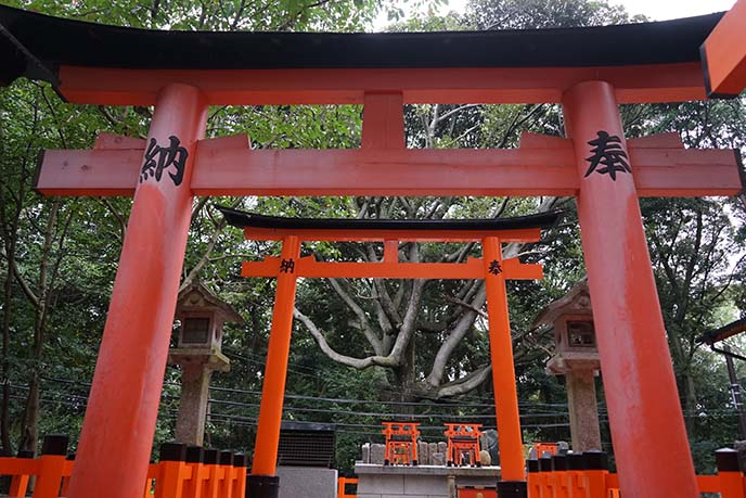Kyoto, Fushimi-Inari-Taisha Shrine