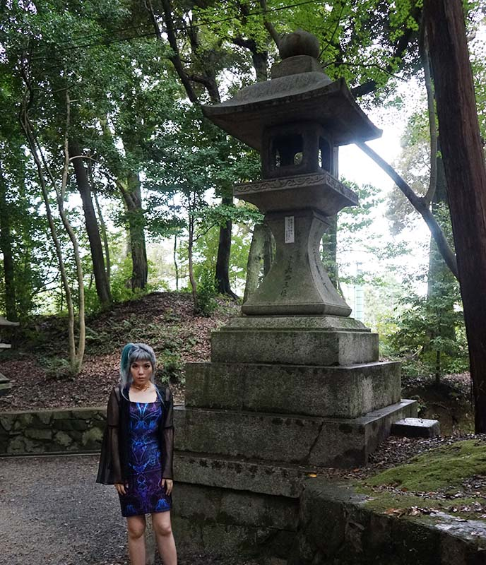 kyoto temple travel guide, day tours