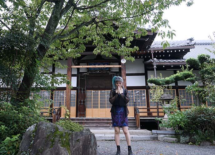 kyoto japan temple tour, photography