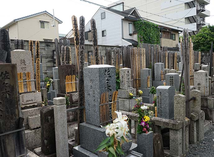 japanese shrine graveyard, tombs