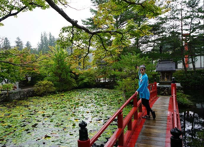 zen buddhist garden pond