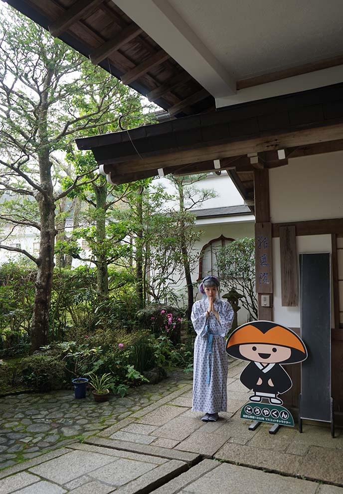 koya-kun mascot mount koya