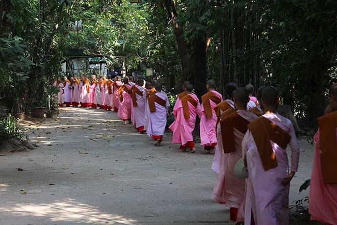 buddhist nuns procession burma