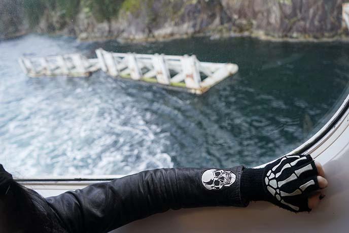pirate skull glove, patch