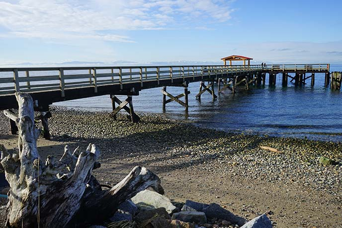 langdale pier, beaches