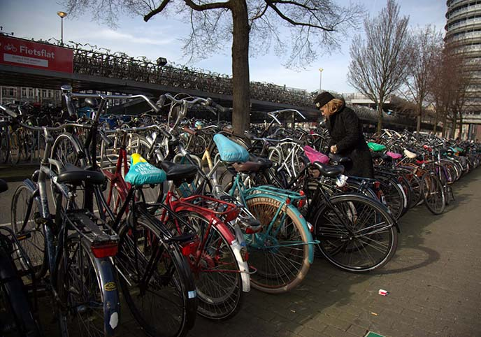 bicycle racks netherlands