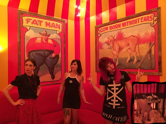 carnival circus themed room