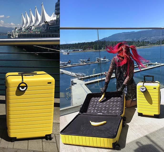 kawaii cute minions suitcase