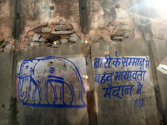 elephant attraction jaipur