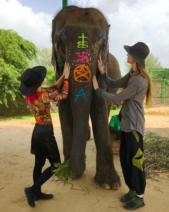 jaipur elephant village