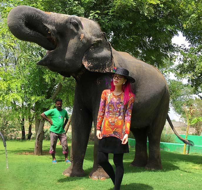 ganesha shirt, elephant god
