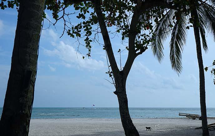 beach bungalow rental langkawi