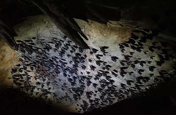 batcave langkawi park