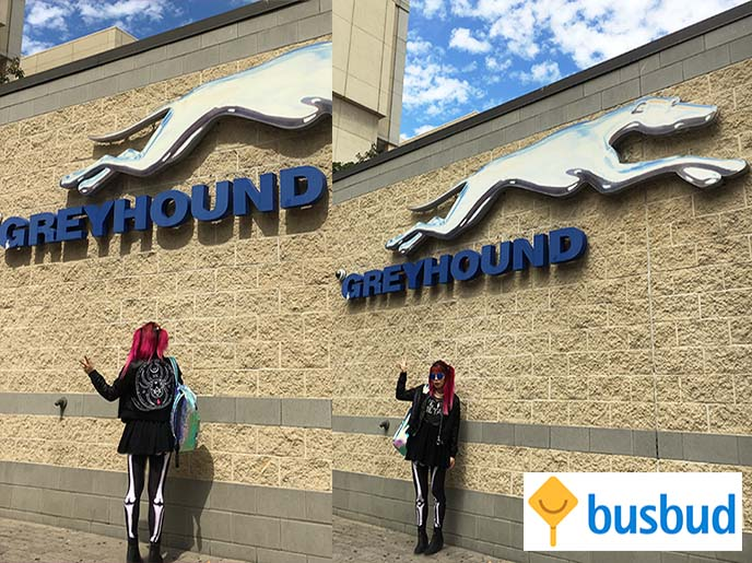 greyhound busbud bus trip